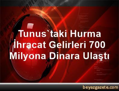 Tunus'taki Hurma İhracat Gelirleri 700 Milyona Dinara Ulaştı