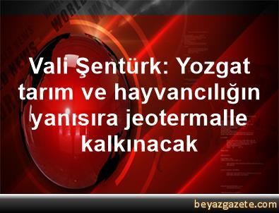 Vali Şentürk: Yozgat tarım ve hayvancılığın yanısıra jeotermalle kalkınacak