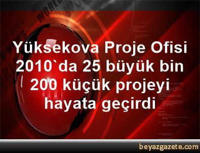 Yüksekova Proje Ofisi, 2010'da 25 büyük, bin 200 küçük projeyi hayata geçirdi