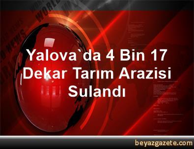 Yalova'da 4 Bin 17 Dekar Tarım Arazisi Sulandı