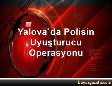 Yalova'da Polisin Uyuşturucu Operasyonu