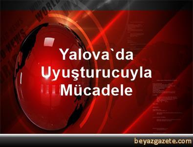 Yalova'da Uyuşturucuyla Mücadele