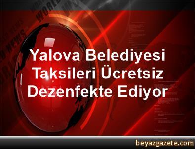 Yalova Belediyesi Taksileri Ücretsiz Dezenfekte Ediyor