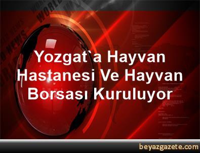 Yozgat'a Hayvan Hastanesi Ve Hayvan Borsası Kuruluyor