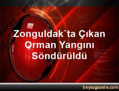 Zonguldak'ta Çıkan Orman Yangını Söndürüldü