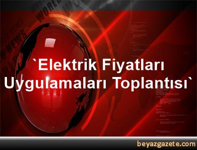 'Elektrik Fiyatları Uygulamaları Toplantısı'
