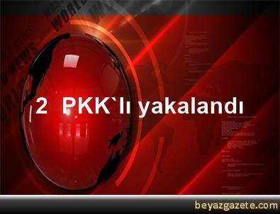 2  PKK'lı yakalandı