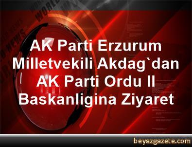 AK Parti Erzurum Milletvekili Akdag'dan AK Parti Ordu Il Baskanligina Ziyaret