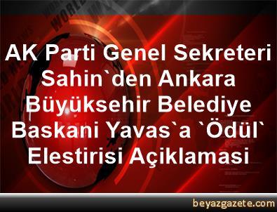 AK Parti Genel Sekreteri Sahin'den Ankara Büyüksehir Belediye Baskani Yavas'a 'Ödül' Elestirisi Açiklamasi