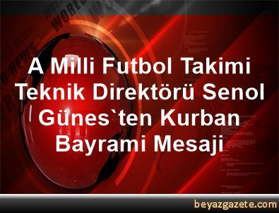 A Milli Futbol Takimi Teknik Direktörü Senol Günes'ten Kurban Bayrami Mesaji