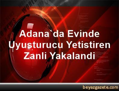 Adana'da Evinde Uyusturucu Yetistiren Zanli Yakalandi