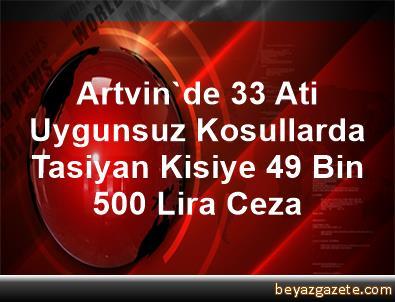 Artvin'de 33 Ati Uygunsuz Kosullarda Tasiyan Kisiye 49 Bin 500 Lira Ceza