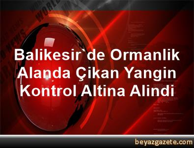 Balikesir'de Ormanlik Alanda Çikan Yangin Kontrol Altina Alindi
