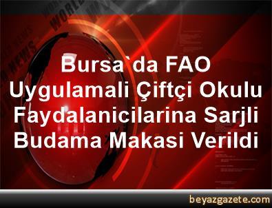 Bursa'da FAO Uygulamali Çiftçi Okulu Faydalanicilarina Sarjli Budama Makasi Verildi