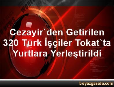 Cezayir'den Getirilen 320 Türk İşçiler Tokat'ta Yurtlara Yerleştirildi
