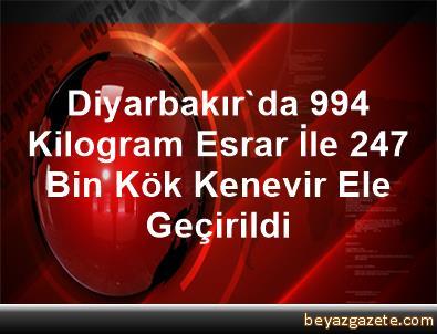 Diyarbakır'da 994 Kilogram Esrar İle 247 Bin Kök Kenevir Ele Geçirildi