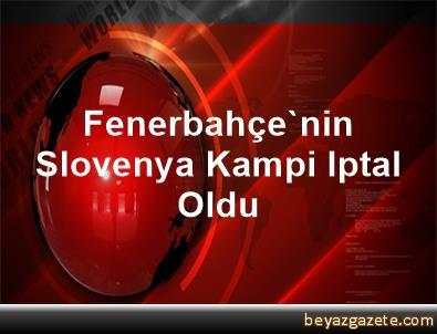 Fenerbahçe'nin Slovenya Kampi Iptal Oldu
