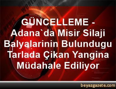 GÜNCELLEME - Adana'da Misir Silaji Balyalarinin Bulundugu Tarlada Çikan Yangina Müdahale Ediliyor