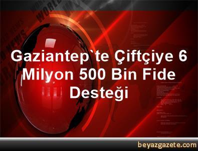 Gaziantep'te Çiftçiye 6 Milyon 500 Bin Fide Desteği