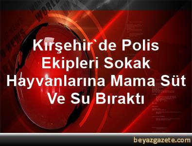 Kırşehir'de Polis Ekipleri Sokak Hayvanlarına Mama, Süt Ve Su Bıraktı