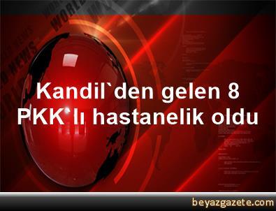 Kandil'den gelen 8 PKK'lı hastanelik oldu