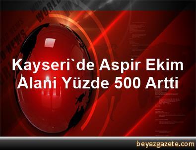 Kayseri'de Aspir Ekim Alani Yüzde 500 Artti