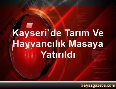 Kayseri'de Tarım Ve Hayvancılık Masaya Yatırıldı