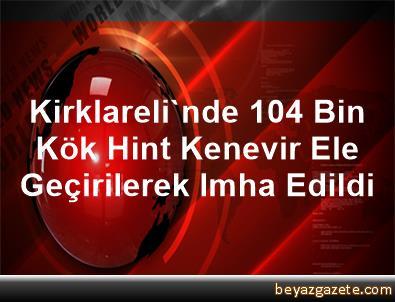 Kirklareli'nde 104 Bin Kök Hint Kenevir Ele Geçirilerek Imha Edildi