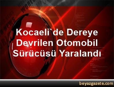 Kocaeli'de Dereye Devrilen Otomobil Sürücüsü Yaralandı