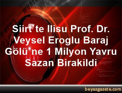 Siirt'te Ilisu Prof. Dr. Veysel Eroglu Baraj Gölü'ne 1 Milyon Yavru Sazan Birakildi