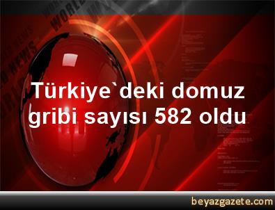 Türkiye'deki domuz gribi sayısı 582 oldu