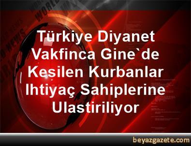 Türkiye Diyanet Vakfinca Gine'de Kesilen Kurbanlar Ihtiyaç Sahiplerine Ulastiriliyor