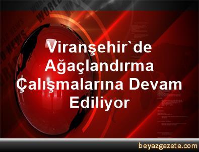Viranşehir'de Ağaçlandırma Çalışmalarına Devam Ediliyor