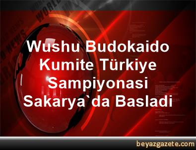 Wushu Budokaido Kumite Türkiye Sampiyonasi Sakarya'da Basladi