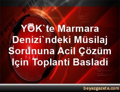YÖK'te Marmara Denizi'ndeki Müsilaj Sorununa Acil Çözüm Için Toplanti Basladi