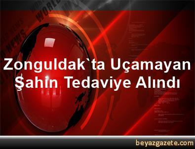 Zonguldak'ta Uçamayan Şahin Tedaviye Alındı